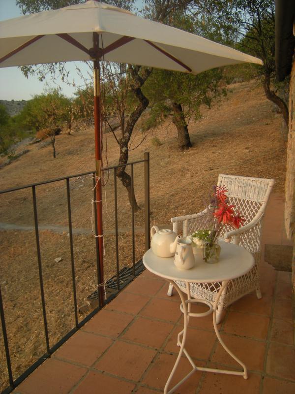 Breakfast on the terrace facing east