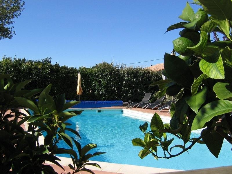 piscine (5 x11) avec vue imprenable sur le vignoble