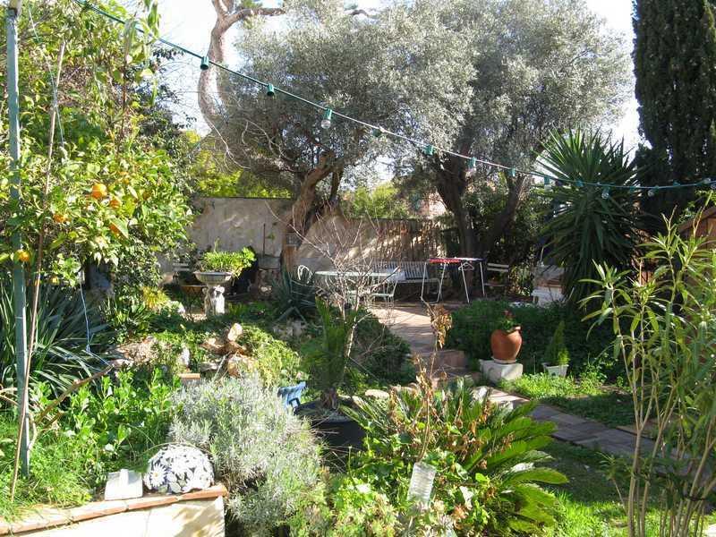 enclosed garden with Mediterranean plants