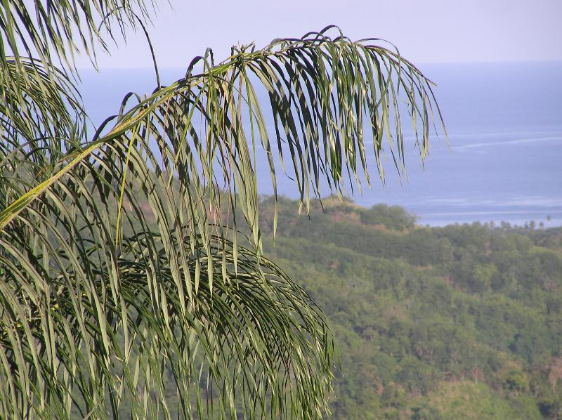 Caribbean seaview from Windy Edge