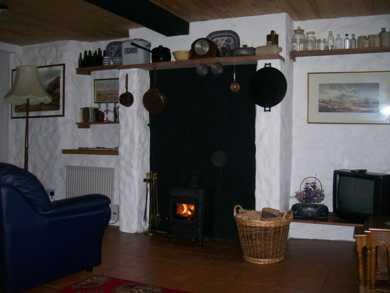 Traditional fireplace in sitting room, bookshelf, television, radio, leather 3-piece suite