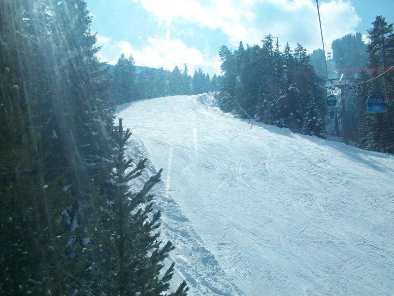 Ski Run and Gondola