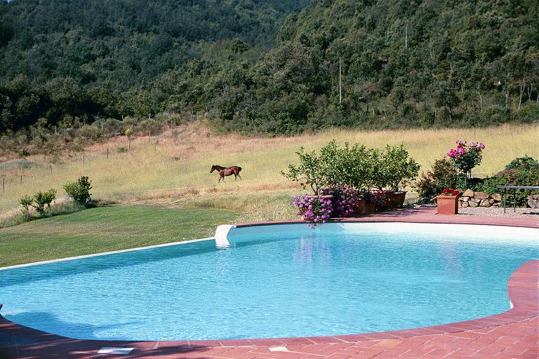 Beautiful house with pool access, location de vacances à Murlo