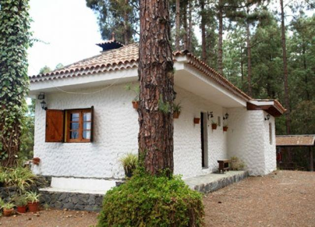 Casa La Peña, holiday rental in Icod de los Vinos