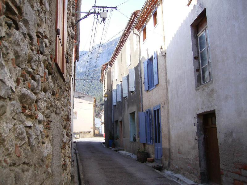 Village house with views, holiday rental in Bessede-de-Sault