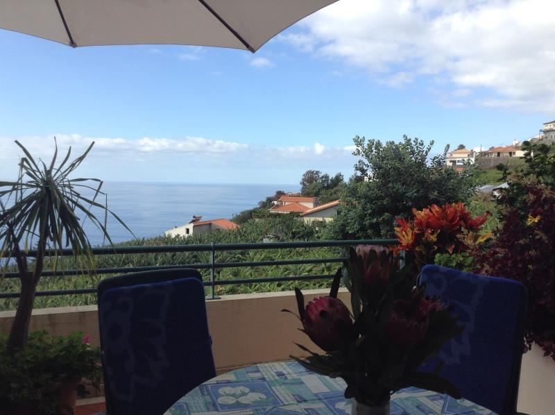 DO NOT MISS OUT...Apartment with ocean view +, location de vacances à Arco da Calheta