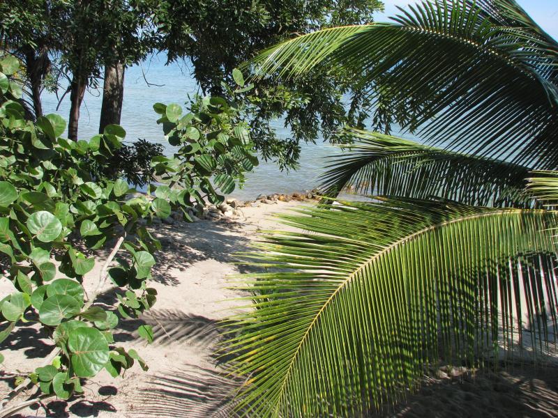 The beach between Joya del Mar and the Maya Beach Hotel.