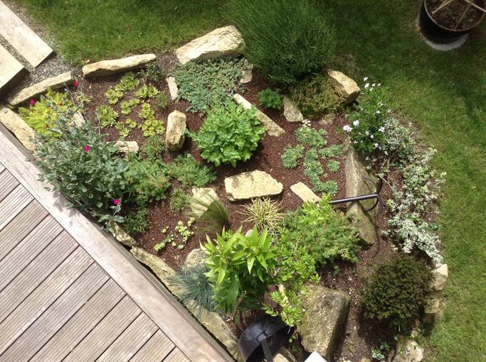 La rocaille, dans le jardin...