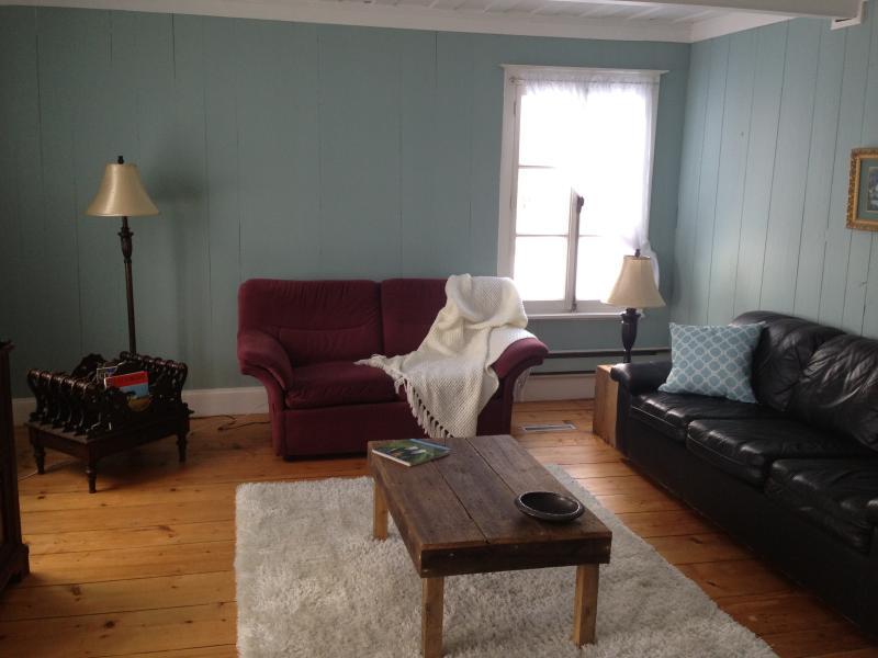 Grand salon avec télé cablée