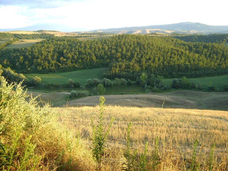 Piccolo Podere nelle Crete Senesi, vacation rental in Vergelle