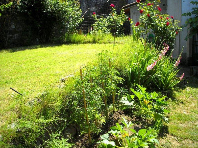 Jardim murado