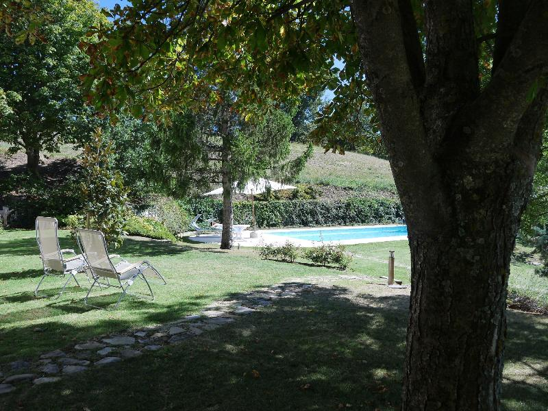 Pool and partial garden view from patio