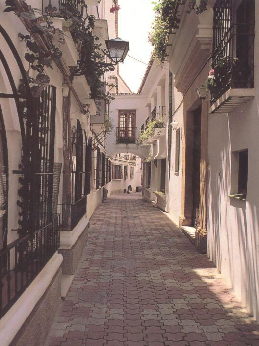 One of the beautiful streets in Marbella Old Town