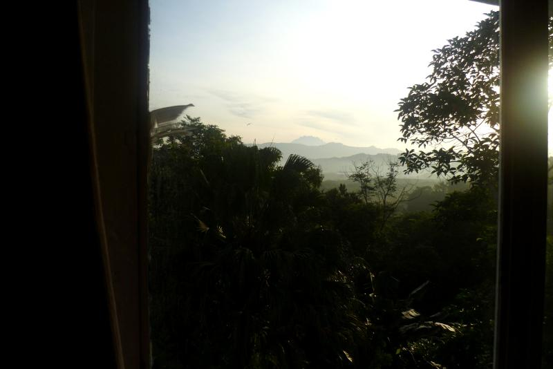 View of Mt.Kinabalu from the room