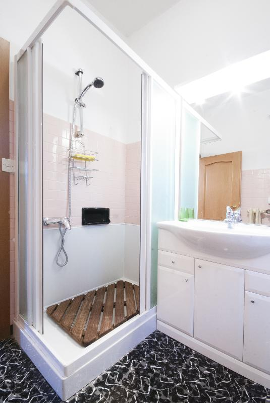 Second bathroom with shower and toilet.