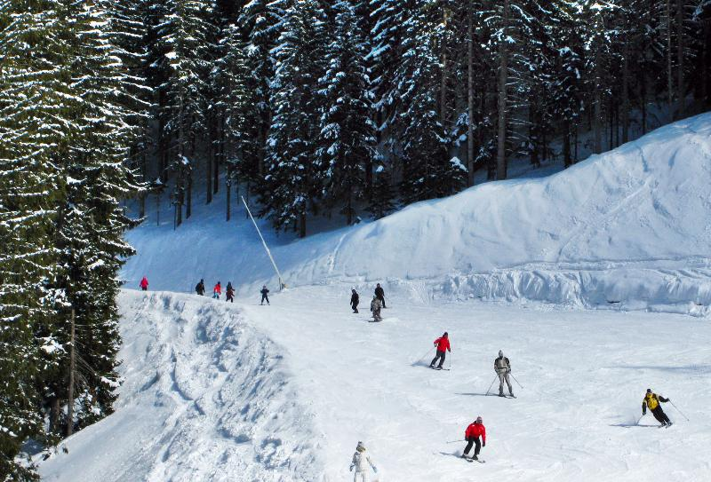 Over 70kms of forest lined pistes