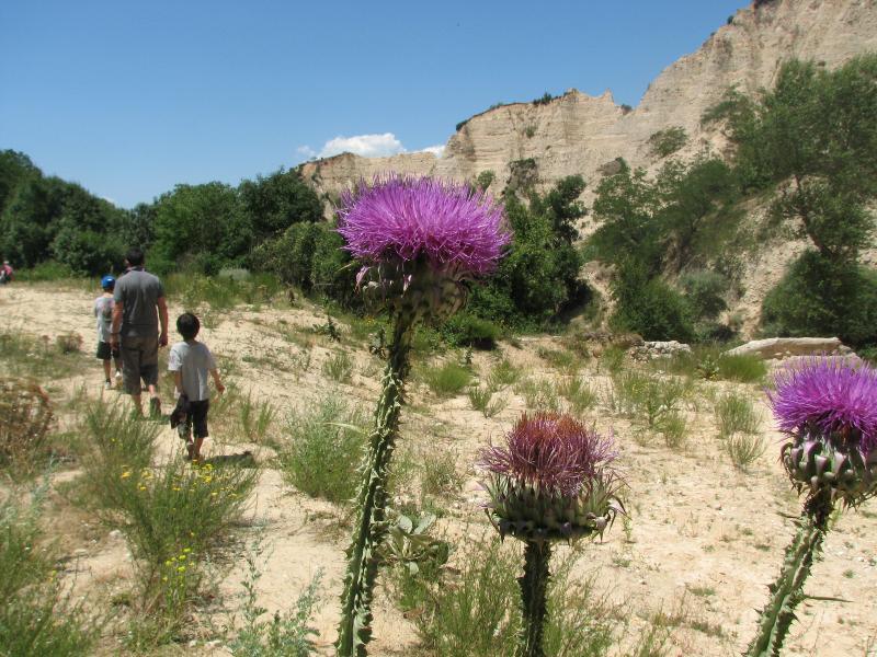 Walking to Rozhen Monastery from Melnik