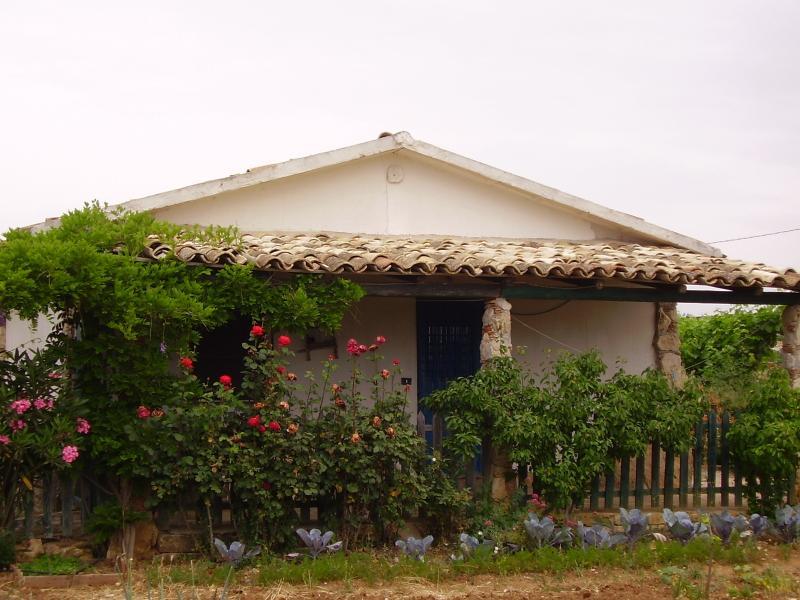 Casa Bilû,  entourée des fleurs, verger et jardin de légumes, en distance de 40 m au pool