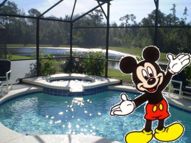 Lakeside10min Disney,Spa/pool,GameRoom, holiday rental in Davenport
