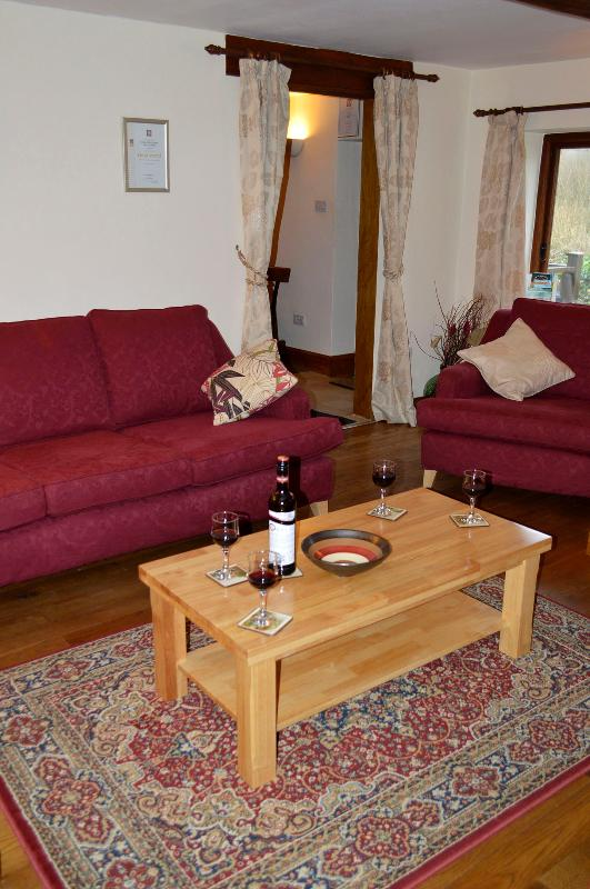 Relax with a glass in front of the fire in the cosy living room