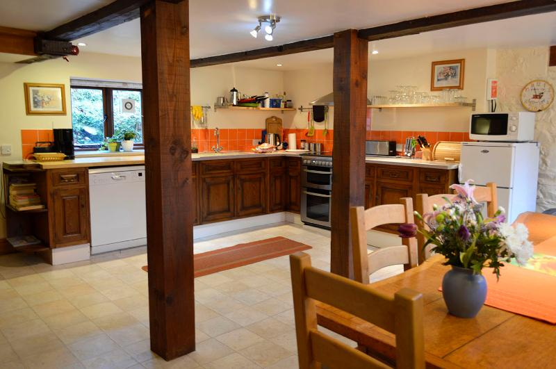 Large kitchen invites to share cooking and enjoying the food
