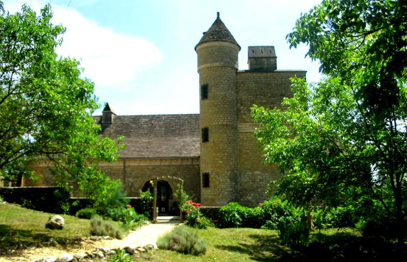 Your own Petit Chateau with private pool, sundowners on the tower battlements!., location de vacances à Saint-André-d'Allas