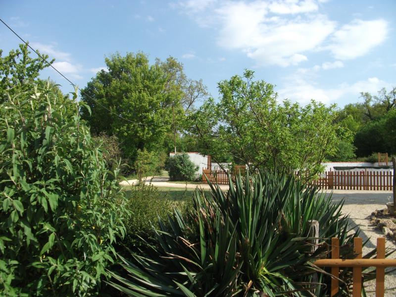 View from garden of Hideaway towards pool area