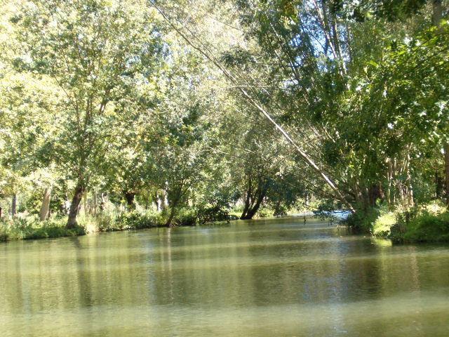 Venise Verte - Green Venice, Marais Poitevin marshlands