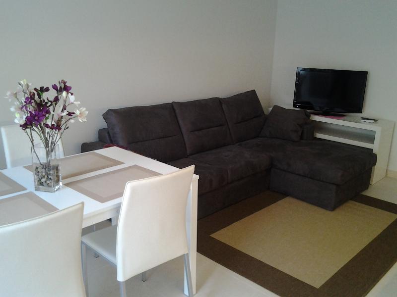 Livingroom area with TV