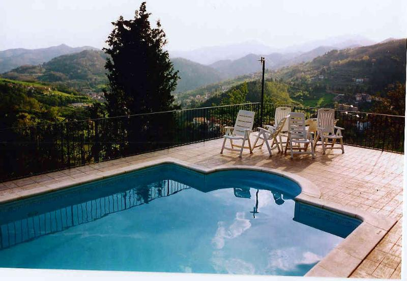 Swimming Pool and belvedere