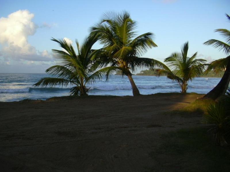 the beach Las bellenas - Playa Las Ballenas - ©picture