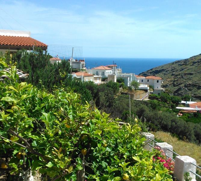 Views from the terrace: village, sea, and lemon tree