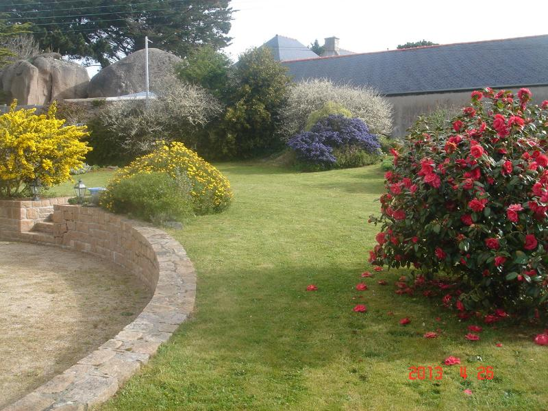 """view """"hele tuin, voorjaarsbloeiers"""
