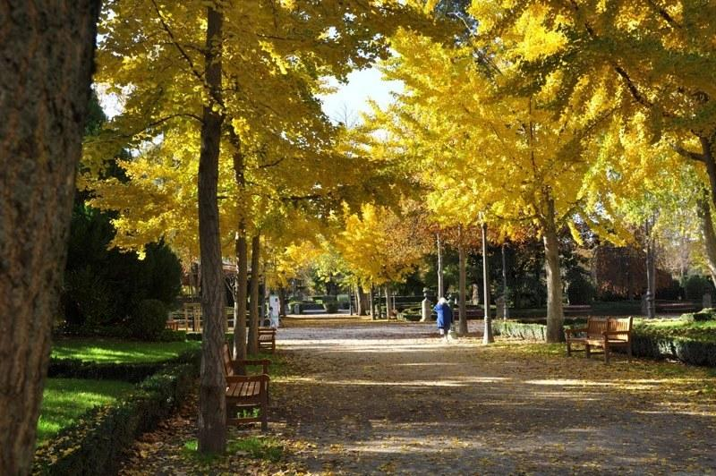 Green Pamplona. Park of the Taconera.7