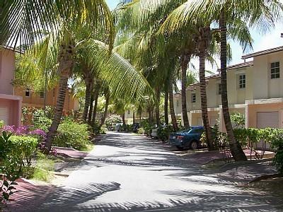 Palm-lined avenue to villa