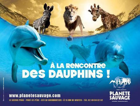 Planète Sauvage : Animal Park Safari and visit his show Dolphins