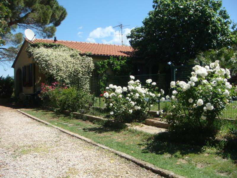 Holiday house  with pool, near beaches, in Tuscany, holiday rental in Campiglia Marittima