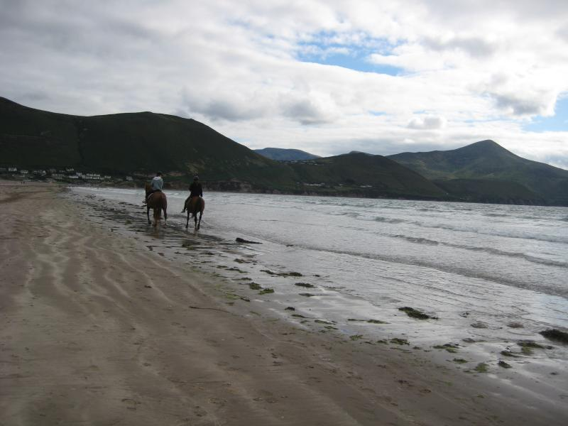 Rossbeigh Beach, Knockatinna Mountain to right of horses.