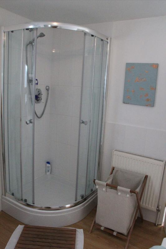 Shower in family bathroom on the first floor