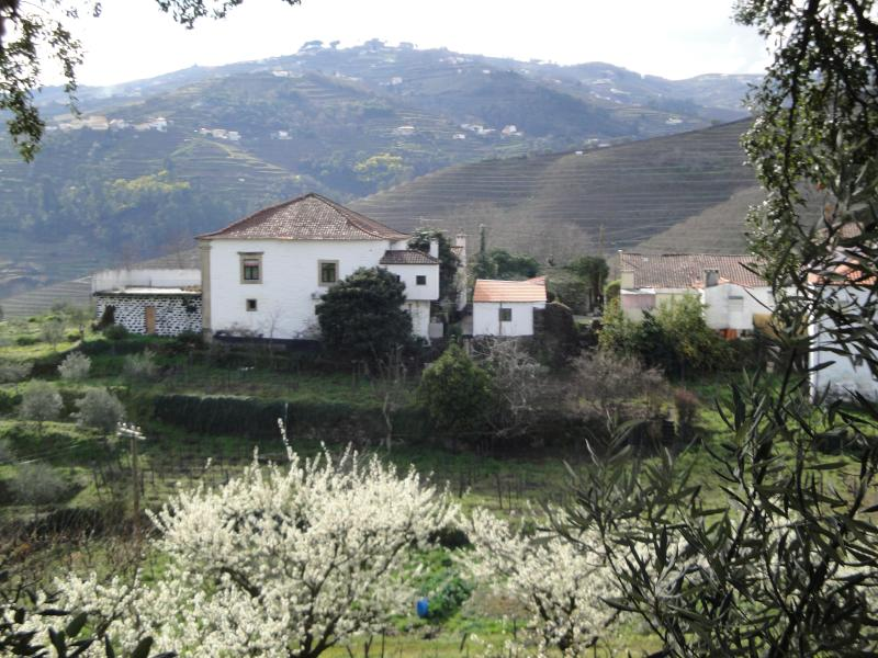 CASA DO FUNDO DO POVO, holiday rental in Vila Real District