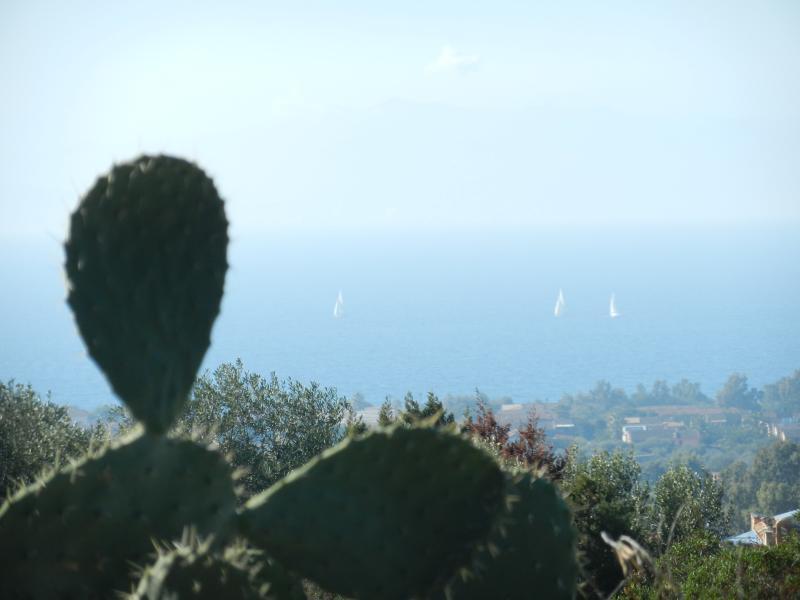 vista mare dal giardino condominiale