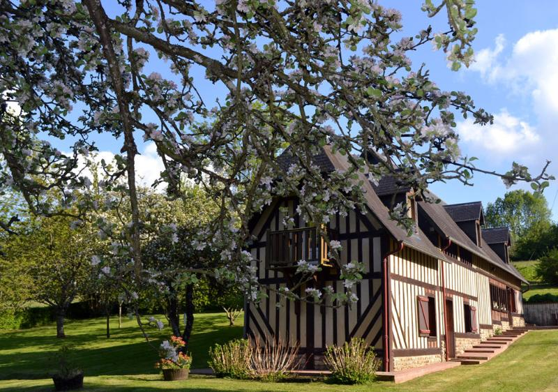 Cottage Reinette for 4 persons- 2 doubles rooms