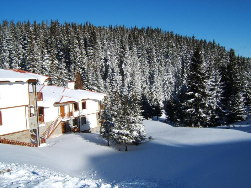 Raikov Ski Lodge, holiday rental in Dedovo