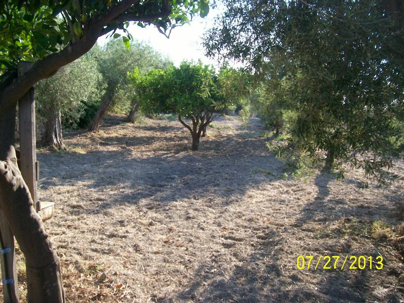 camping, holiday rental in Messina