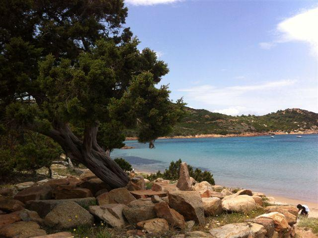 Solemare case vacanze  villetta n°1, holiday rental in San Teodoro