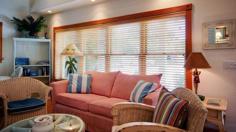 Living Room | Queen Sofa Bed