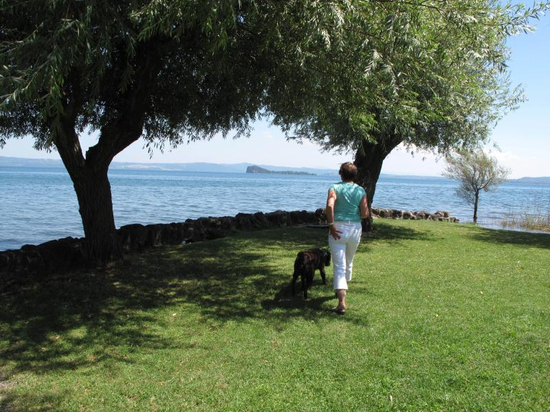 Lake Bolsena from Gigetto's restaurant