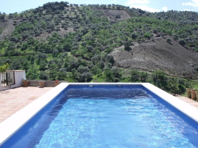 8 x 4m Swimming pool with Wonderful views at Casita la Huerta
