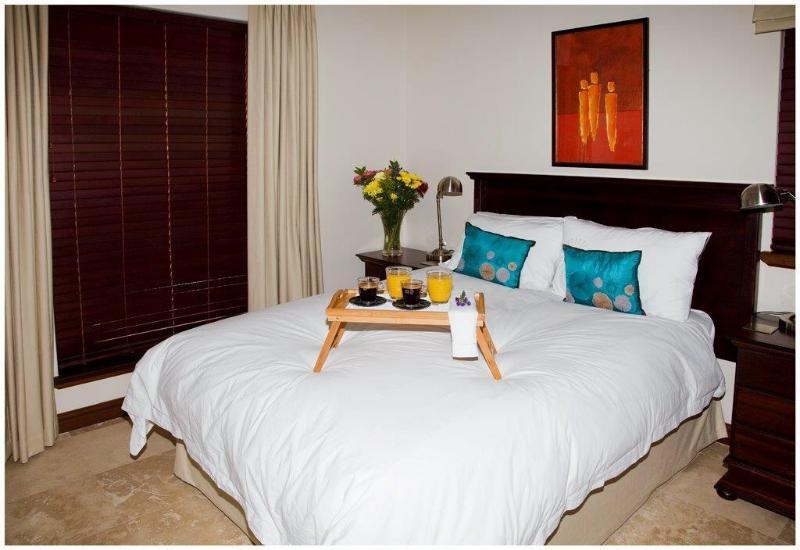 Allaire - Sorbonne Luxury Apartments, location de vacances à Franschhoek