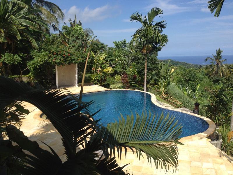 Villa lilly fantastic view,serenity in lovina Bali, holiday rental in Munduk